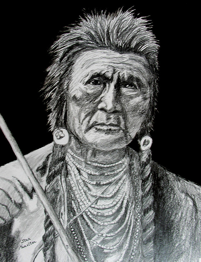 Portrait Drawing - Unknown Indian V by Stan Hamilton