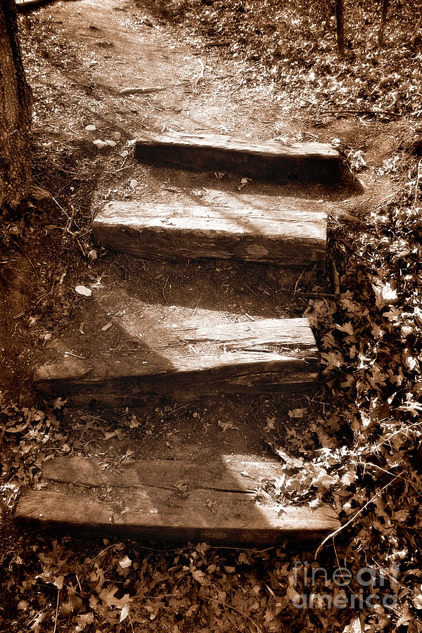 Step Photograph - Untitled by Jeannie Burleson