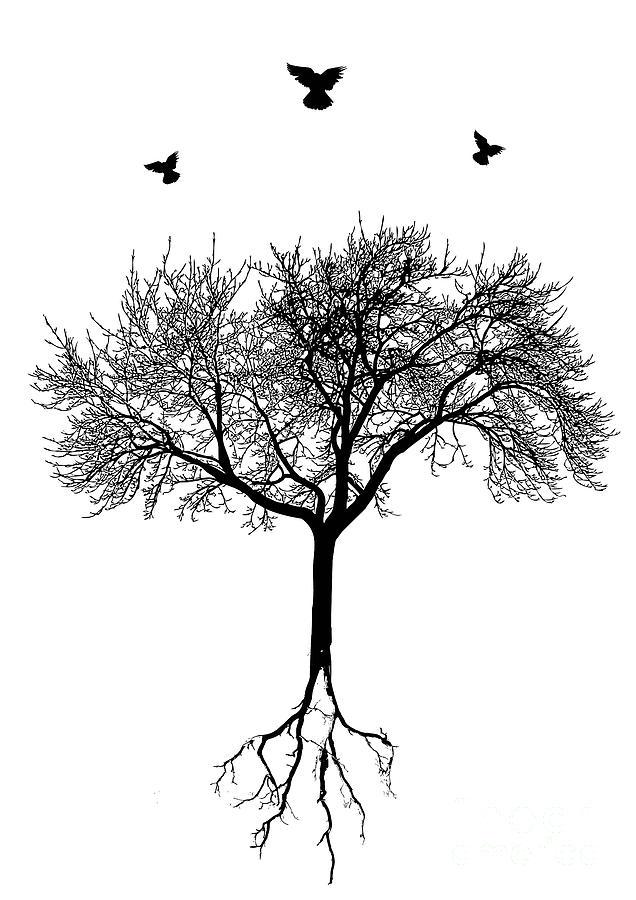 Tree Digital Art - Untitled No.63-01 by Caio Caldas
