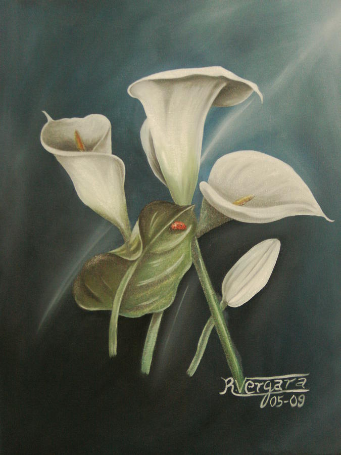 Cala Lillies Painting - Untitled. by Raul  Vergara
