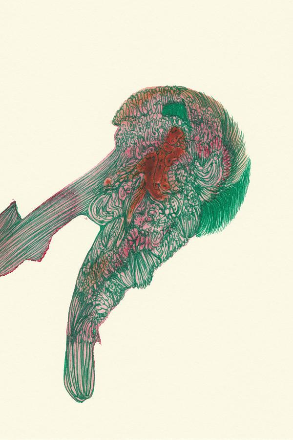 Organic Drawing - Untitled - #ss14dw047 by Satomi Sugimoto