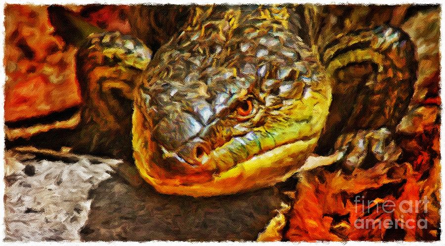 Up Close And Personal Photograph - Up Close And Personal by Blair Stuart