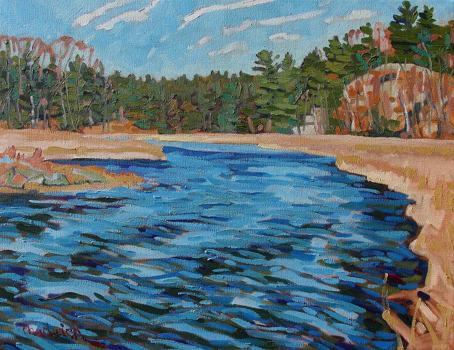 964 Painting - Up Jones Creek With A Paddle by Phil Chadwick