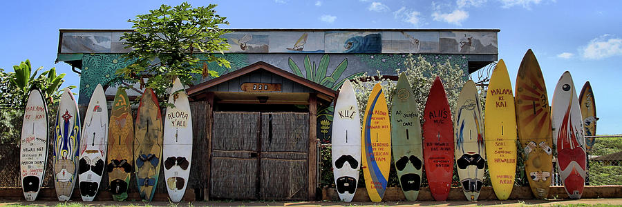 Maui Photograph - Upcountry Boards by DJ Florek