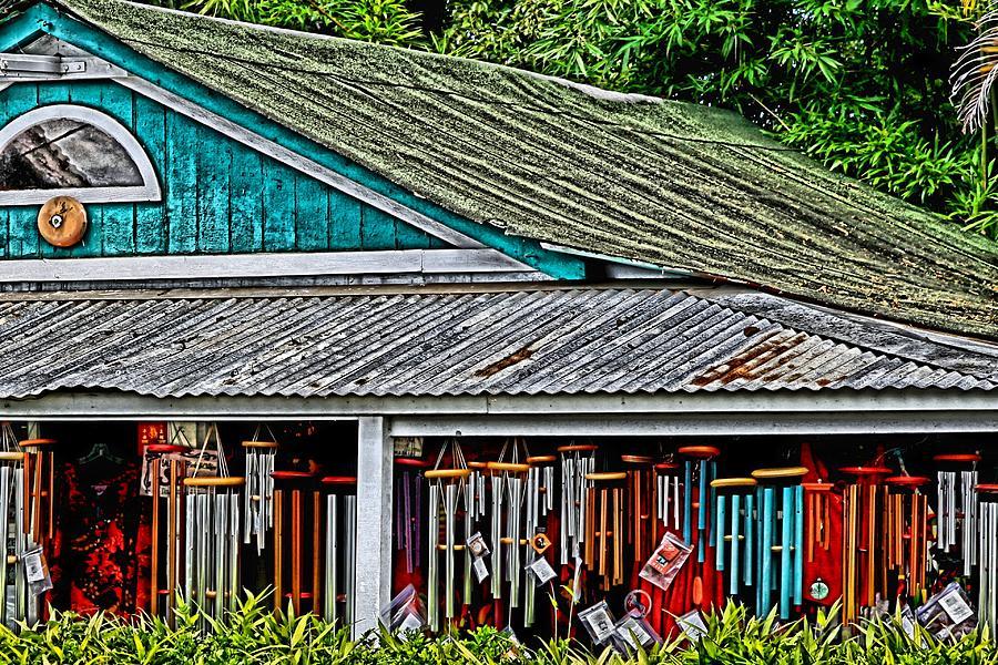 Maui Photograph - Upcountry Chimes by DJ Florek