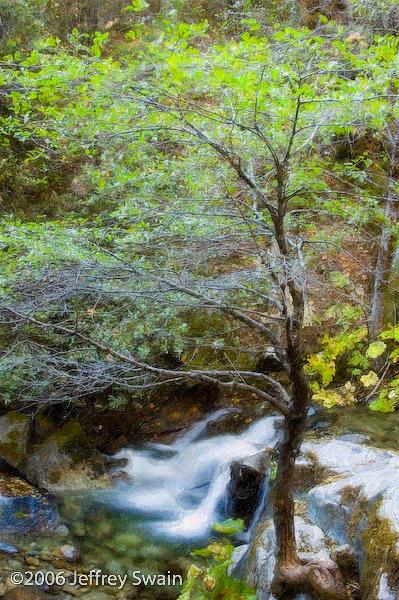Whiskeytown Photograph - Upper Brandy Creek Falls by Jeffrey Swain