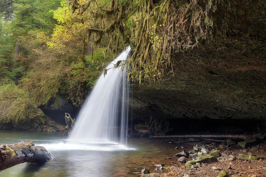 Upper Butte Creek Falls Photograph - Upper Butte Creek Falls Closeup by David Gn