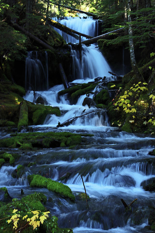 Waterfall Photograph - Upper Falls by Mary Masters