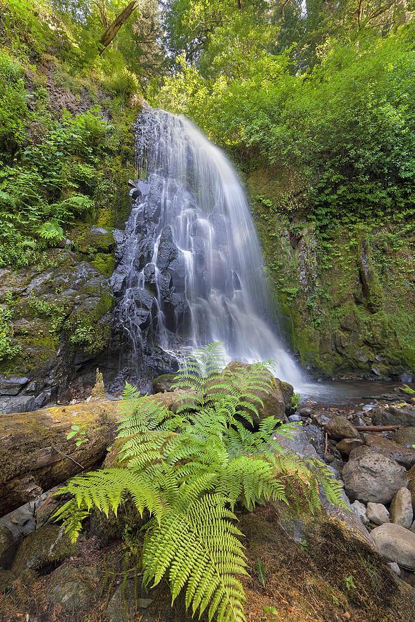Elowah Falls Photograph - Upper Mccord Creek Falls by David Gn