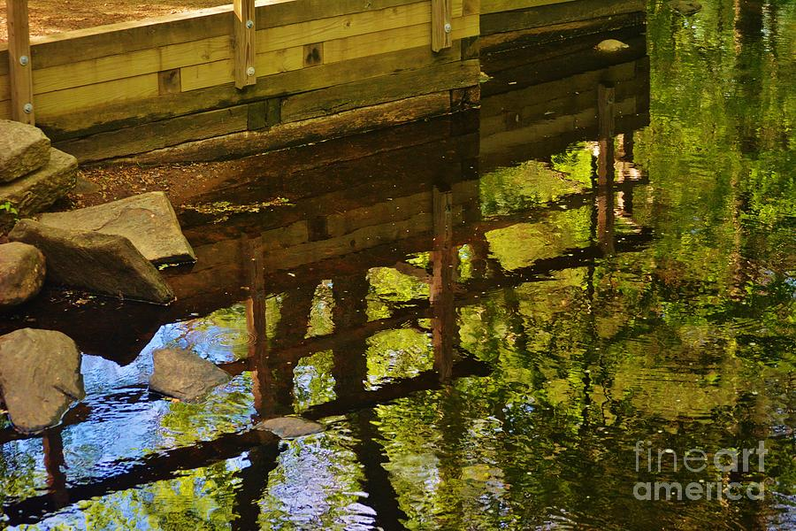 Water Reflection Photograph - Upside Down by Virginia Levasseur