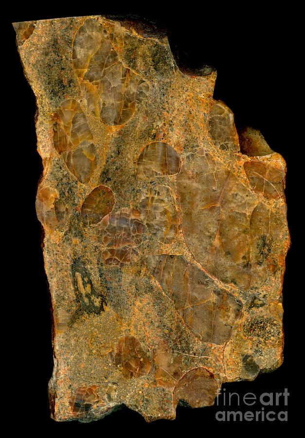 Mineral Photograph - Uranium Ore Conglomerate by Ted Kinsman