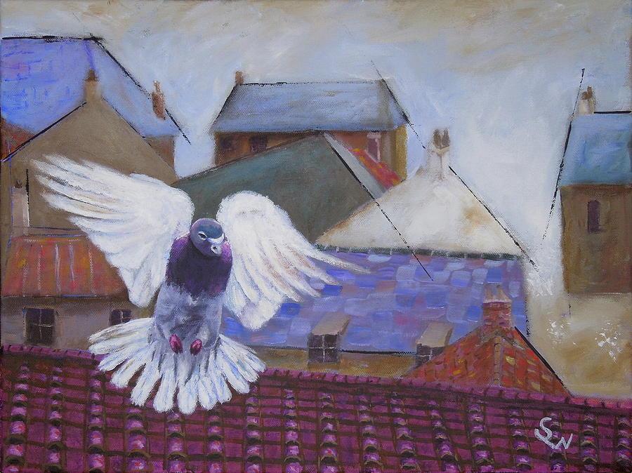Urban Pigeon by Shirley Wellstead