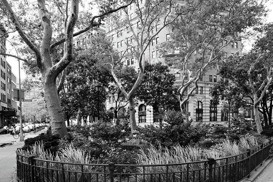 Park Photograph - Urban Pocket Park by Cate Franklyn
