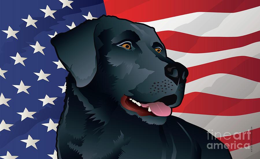 Labrador Retriever Digital Art - USA Black Lab by Joe Barsin