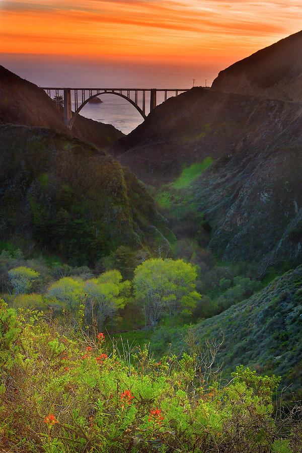 Vertical Photograph - Usa, California, Big Sur, Bixby Bridge by Don Smith