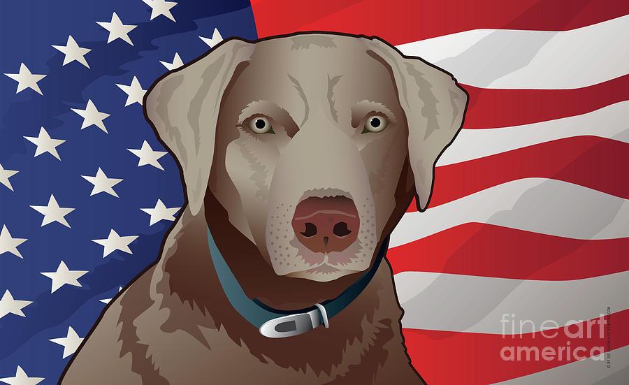 Labrador Retriever Digital Art - USA Silver Lab by Joe Barsin