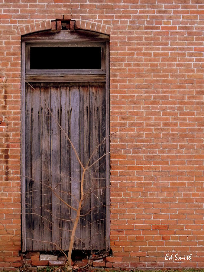 Door Photograph - Use Side Entrance by Ed Smith