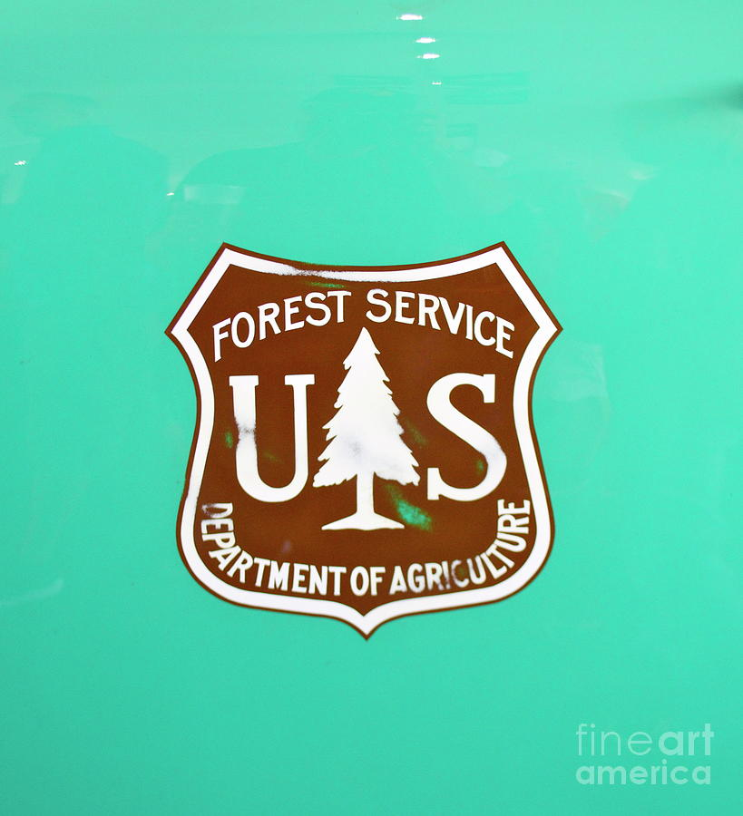 USFS emblem by Pamela Walrath
