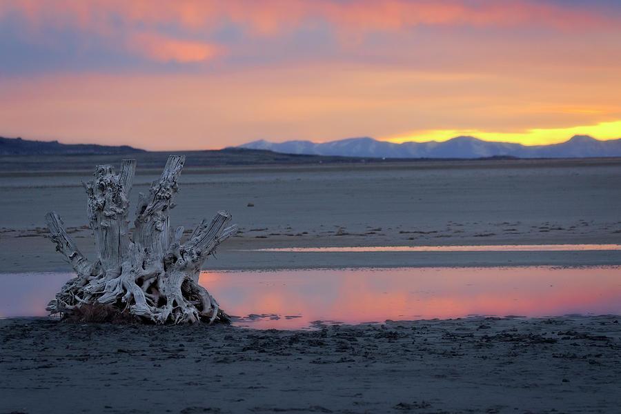 Utah Photograph - Utah Great Salt Lake  by Joan Escala