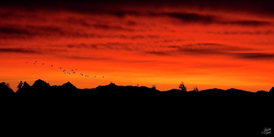 Fiery Sunrise by Lisa Knechtel