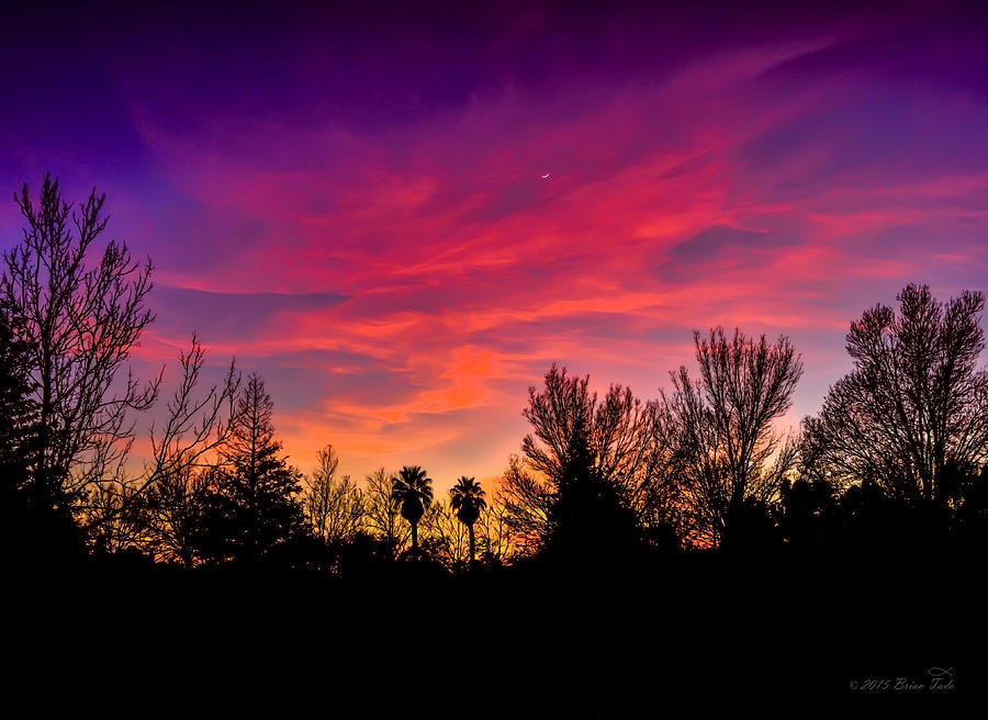Sunset Photograph - Vacaville Sunset Silhouette  by Brian Tada