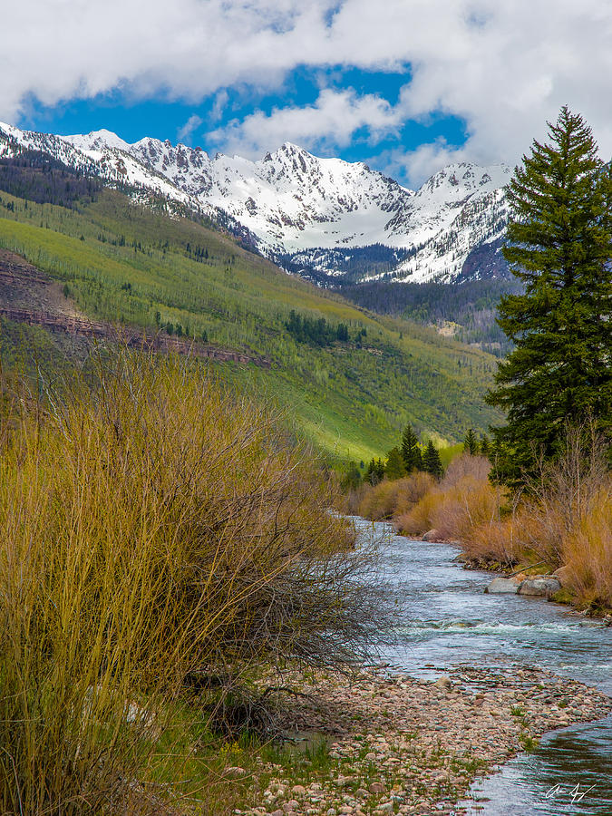 Vail Photograph - Vail Stream by Aaron Spong