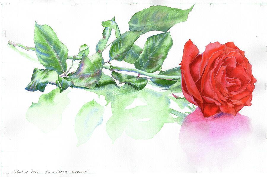 Valentine Rose by Xavier Francois