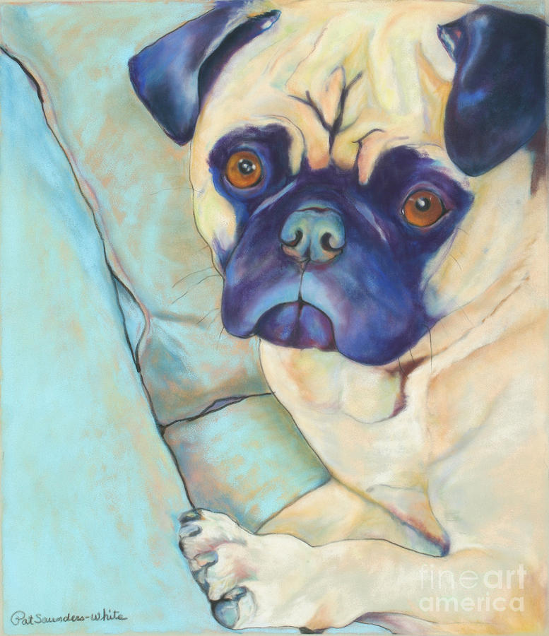 Pug Pastel - Valentino by Pat Saunders-White