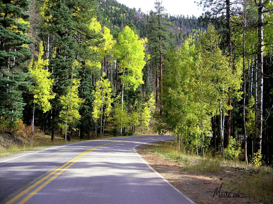 Colorado Photograph - Vallecito Colorado by Marti Green