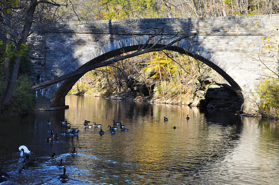 Wissahickon Photograph - Valley Green Bridge by Bill Cannon
