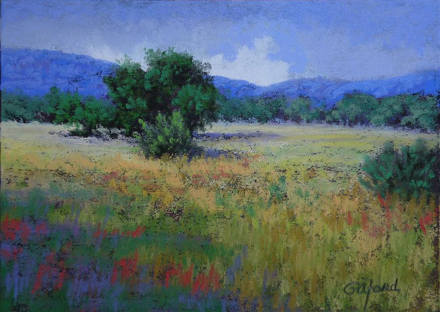 Pastel Painting - Valley View by Paula Ann Ford
