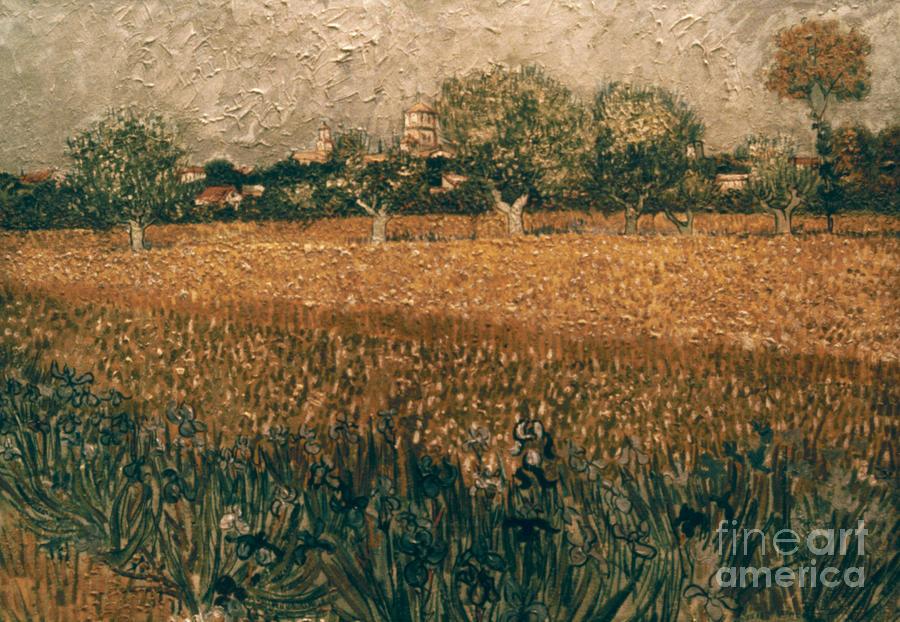 1888 Photograph - Van Gogh: Arles, 1888 by Granger