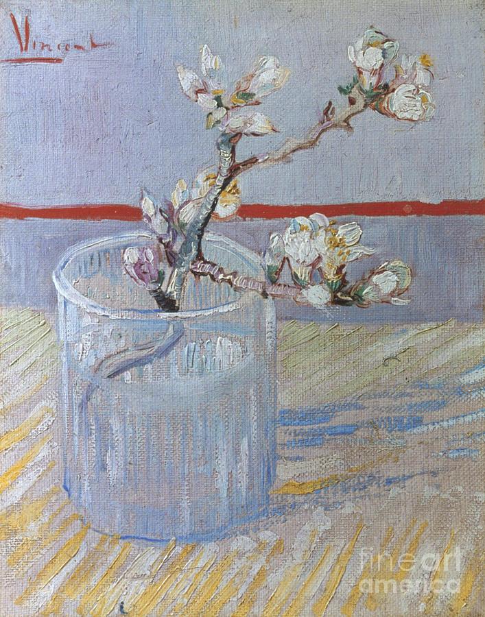 1888 Photograph - Van Gogh: Branch, 1888 by Granger