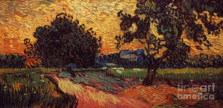 1890 Photograph - Van Gogh: Castle, 1890 by Granger