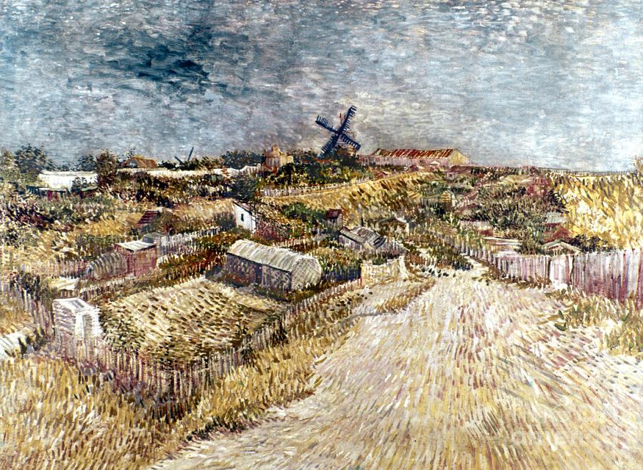 1887 Photograph - Van Gogh: Gardens, 1887 by Granger