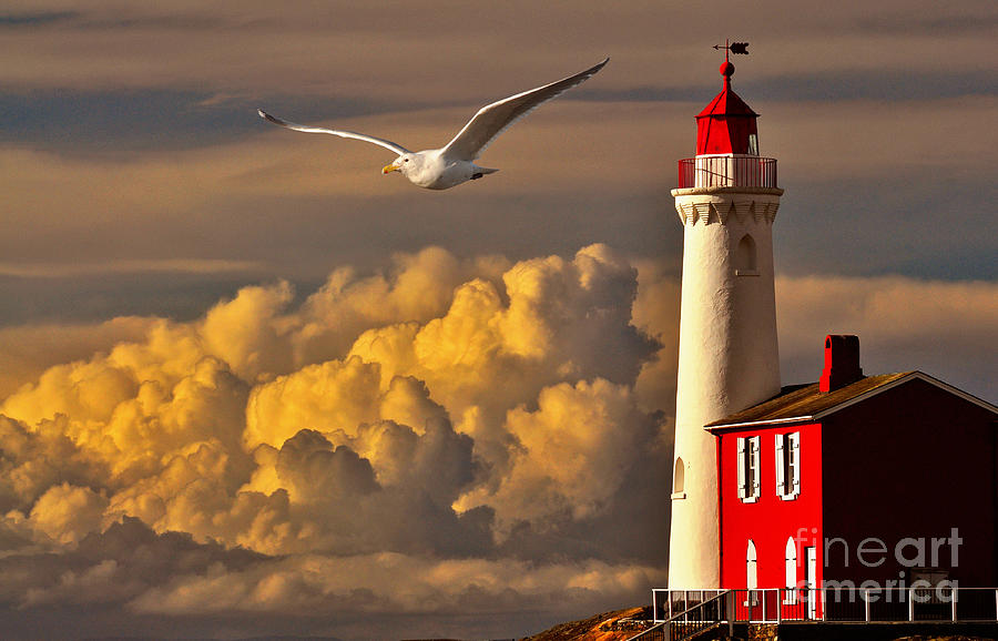 Vancouver Island Lighthouse by Von McKnelly