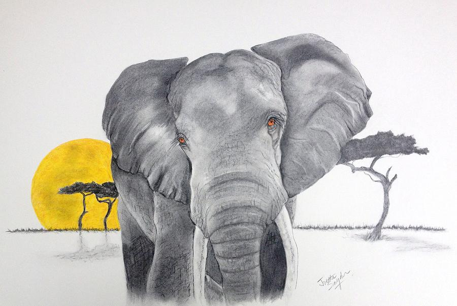 Vanishing Elephant by Joette Snyder