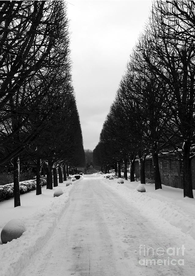 Winter Photograph - Vanishing Point by David Bearden