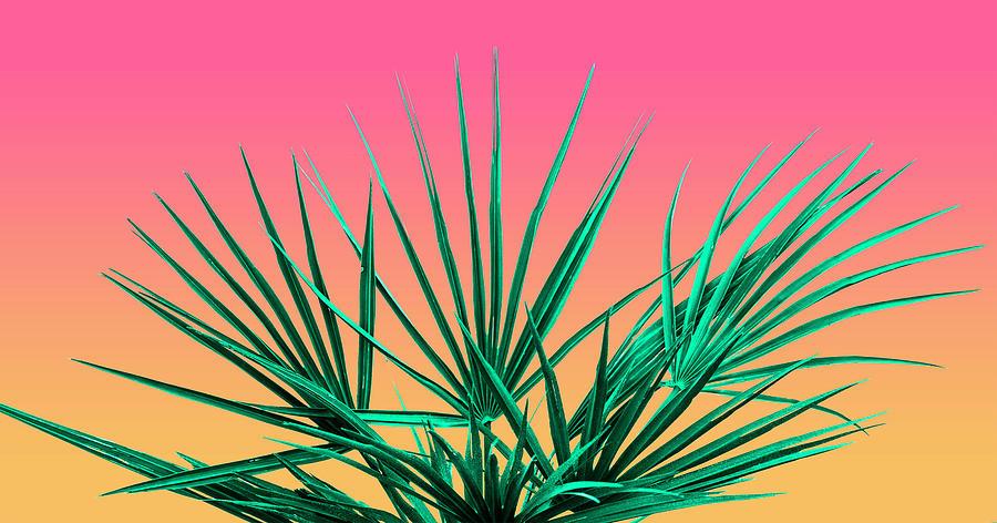 Vaporwave Palm Life - Miami Sunset by Jennifer Walsh