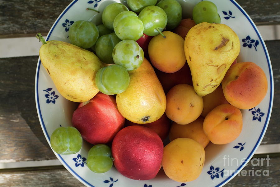 Apricot Photograph - Variety Of Fresh Summer Fruit On A Plate by Sami Sarkis