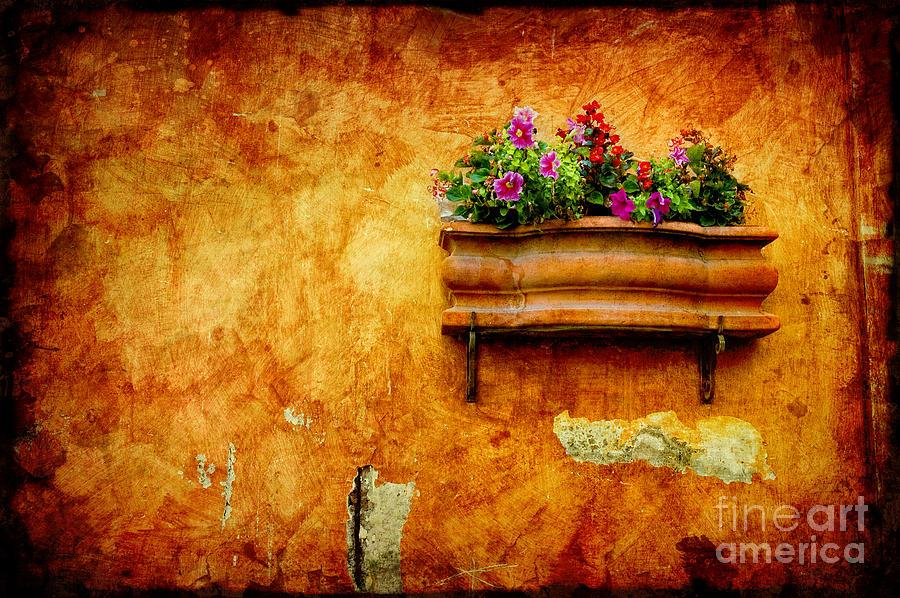 Dark Photograph - Vase by Silvia Ganora