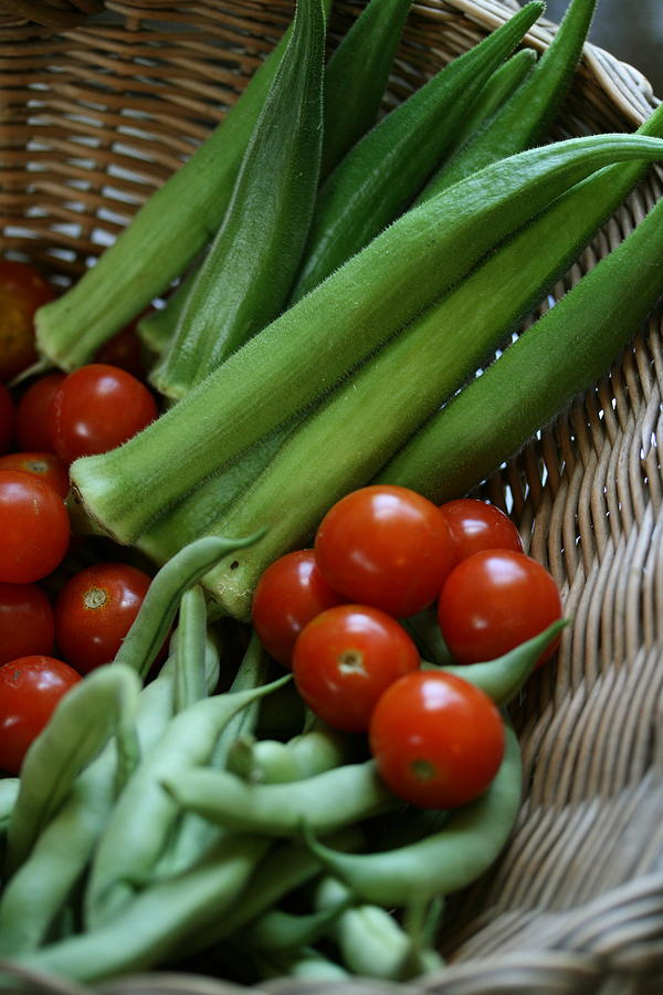 Okra Photograph - Vegetable Basket by Karen Fowler