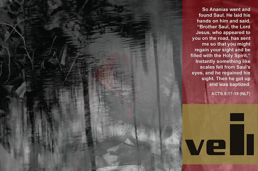 Veil Photograph - Veil A by Affini Woodley