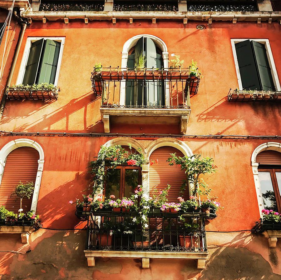 Venetian Windows by Alessandro Della Pietra