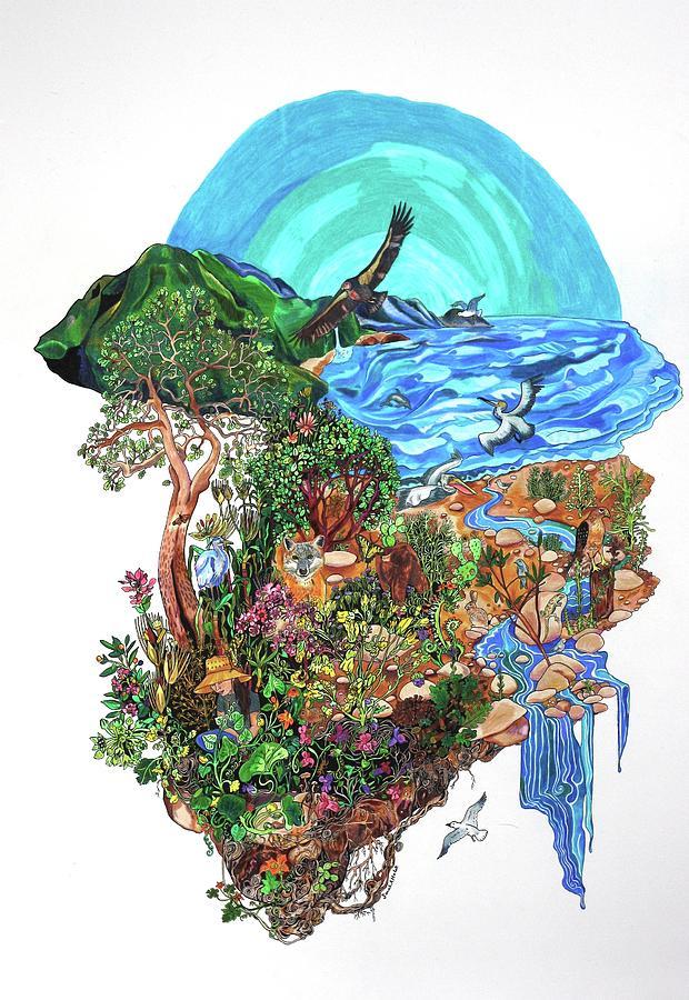 Ventura River Drawing - Ventura River Watershed by Sarah Holst