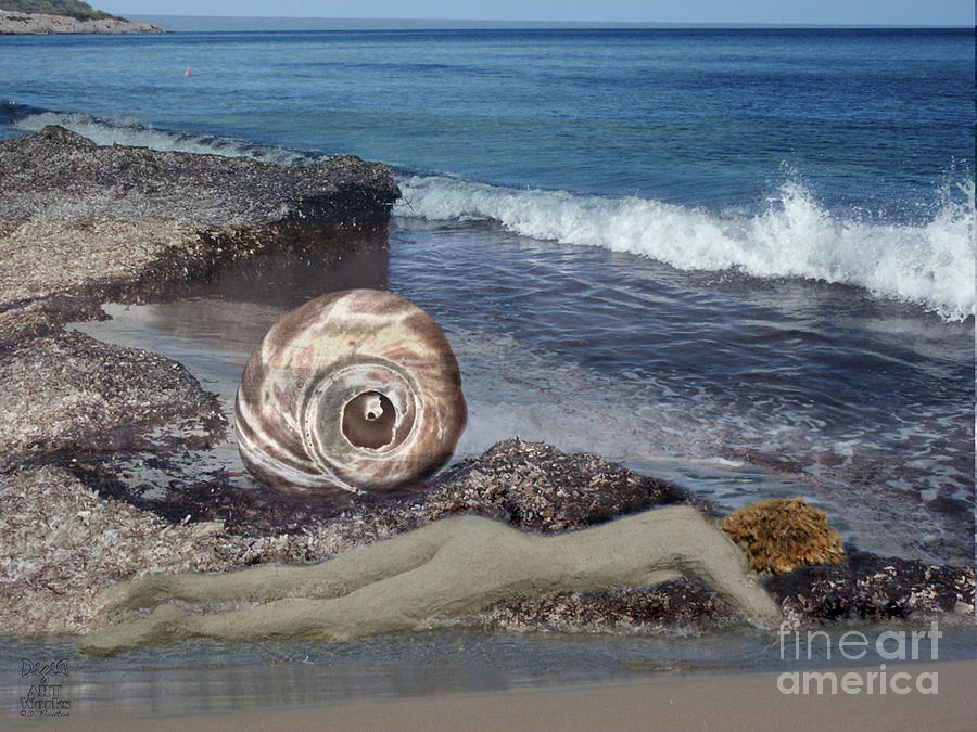 Venus Photograph - Venus Off The Shell by Dee Flouton