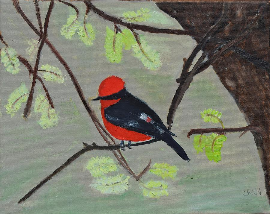 Bird Painting - Vermilion Flycatcher by Charla Van Vlack