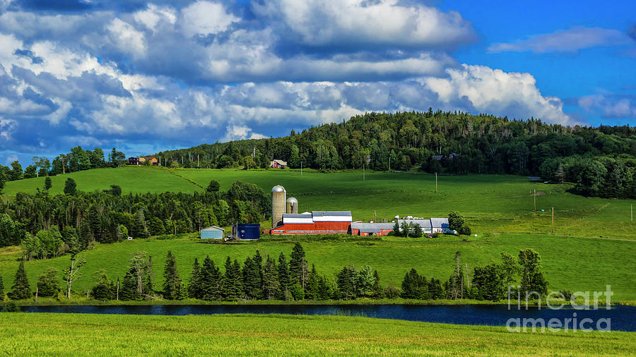 Vermont Dairy Farm by Scenic Vermont Photography