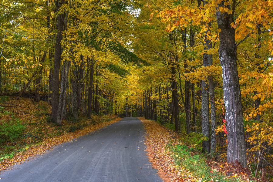 Vermont Fall Tree Lined Street Woodstock Vermont