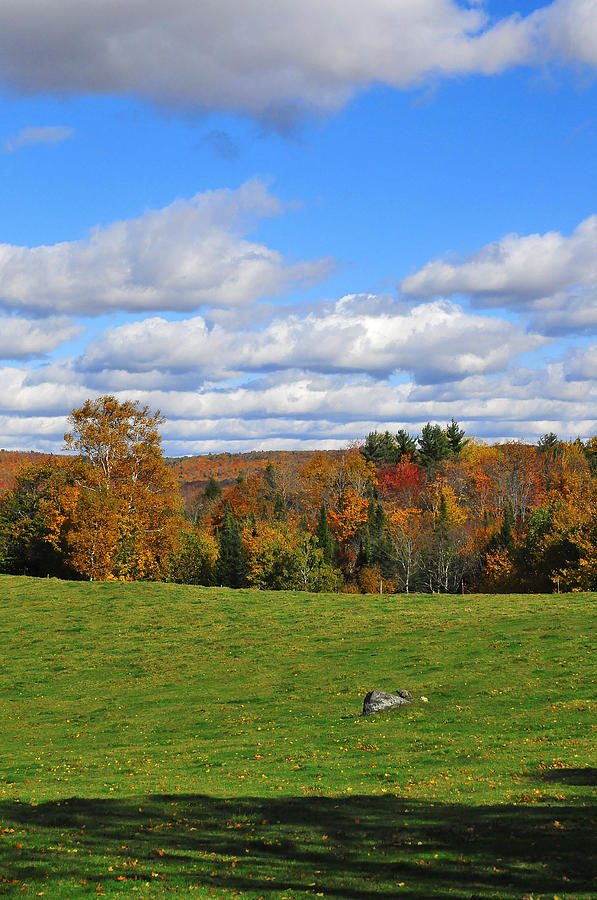 Vermont Photograph - Vermont Field by Mandy Wiltse